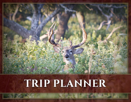 Cinco Canyon Ranch Trip Planner